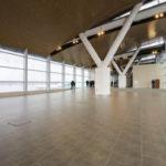 Аэропорт Платов примет пассажиров в тестовом режиме в октябре